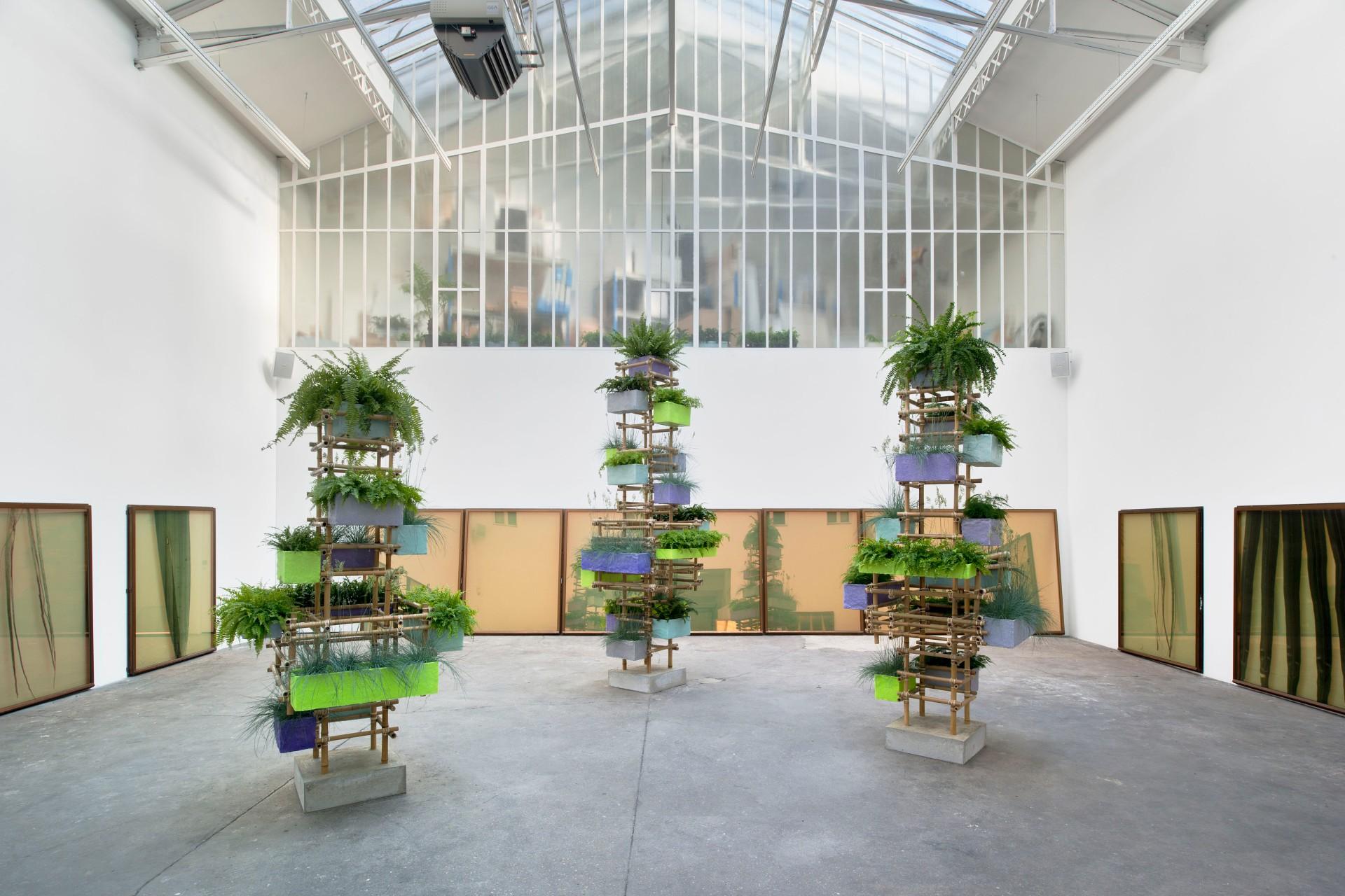 Adrien MISSIKA Impressions Botaniques vue d'exposition, Galerie Bugada & Cargnel, Paris, 2013 courtesy Galerie Bugada & Cargnel, Paris photo : Martin Argyroglo